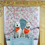 #dogtalesrescue photobooth